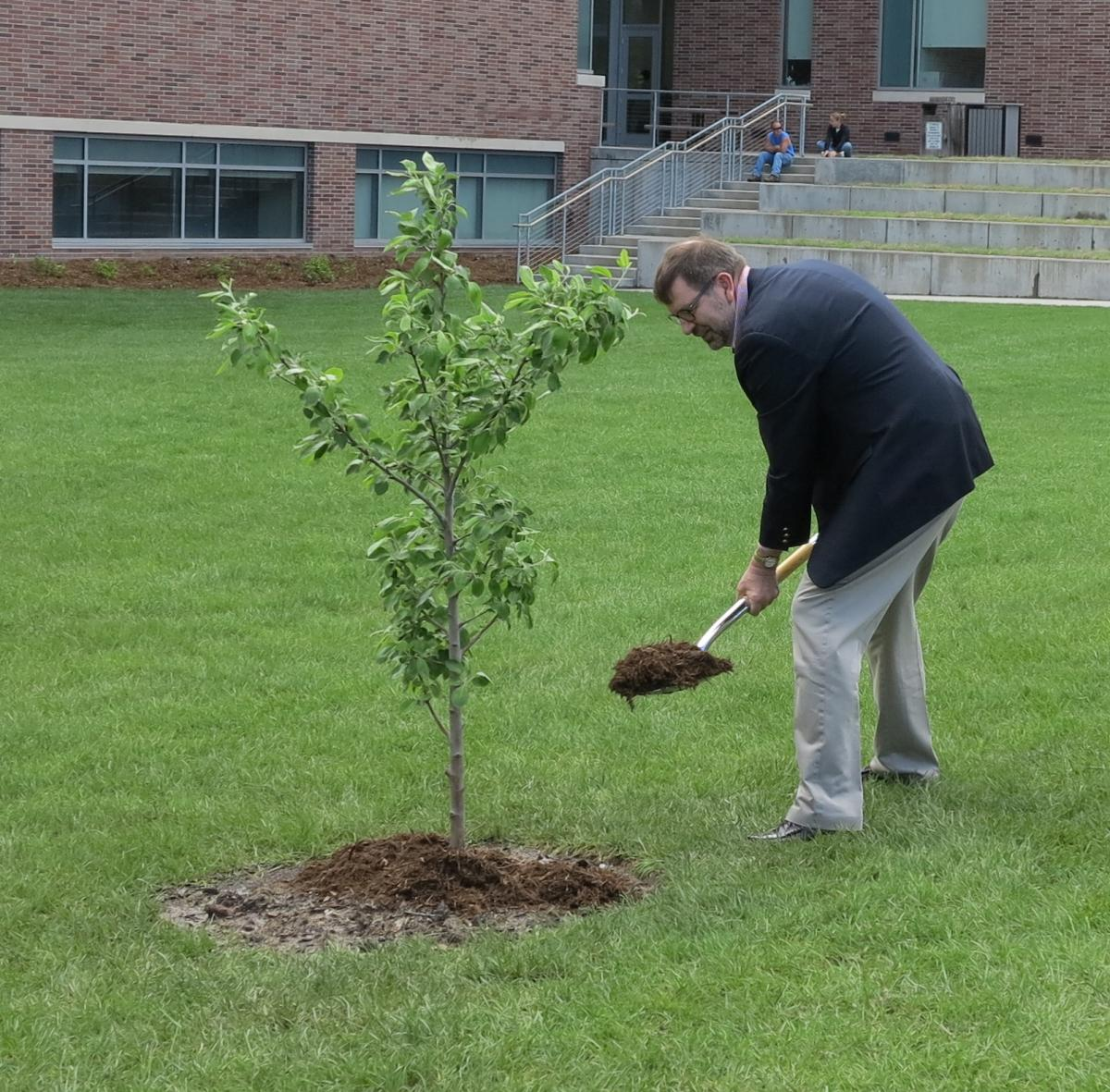 Tim Gay shovels dirt on the Newton's Apple Tree